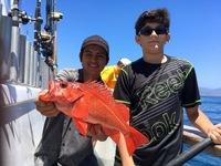 Coral Sea 7.10.16 1/2 day-18