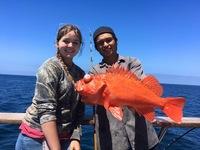 Coral Sea 7.16.16 3/4 day-12