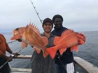 Coral Sea 7.16.16 3/4 day-16
