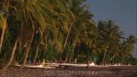 Bali Scenic
