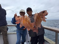 Coral Sea 7.18.16 3/4 day-24