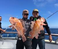 Coral Sea 7.19.16 3/4 day Report-13