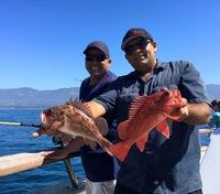 Coral Sea 7.21.16 1/2 day-4