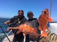 Coral Sea 7.23.16 3/4 day Charter-6