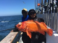 Coral Sea 7.23.16 3/4 day Charter-7