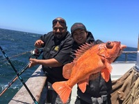 Coral Sea 7.23.16 3/4 day Charter-10