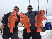 Coral Sea 7.24.16 1/2 day report-2