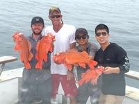 Coral Sea 7.24.16 1/2 day report-8