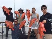 Coral Sea 7.24.16 1/2 day report-9