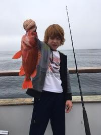 Coral Sea 7.24.16 1/2 day report-15