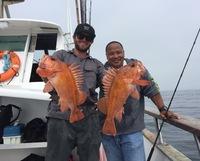 Coral Sea 7.25.16 3/4 day Report-13
