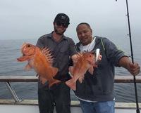 Coral Sea 7.25.16 3/4 day Report-15