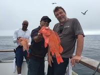 Coral Sea 7.25.16 3/4 day Report-16