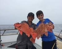 Coral Sea 7.25.16 3/4 day Report-18