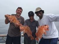 Coral Sea 7.25.16 3/4 day Report-19