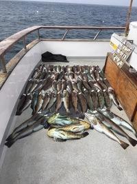 Coral Sea 7.26.16 3/4 day Report-4