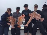 Coral Sea 7.26.16 3/4 day Report-10