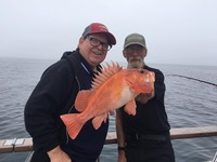 Coral Sea 7.26.16 3/4 day Report-12