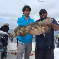 Coral Sea 8.3.16 more lingcod!!-1