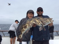 Coral Sea 8.3.16 more lingcod!!-2