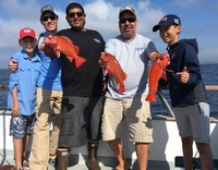 Coral Sea 8.5.16 1/2 day fishing-3