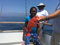 Coral Sea 8.5.16 1/2 day fishing-7