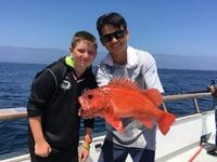 Coral Sea 8.5.16 1/2 day fishing-8