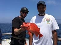 Coral Sea 8.7.16 1/2 day-2