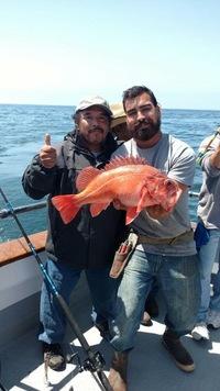 Coral Sea 8.7.16 1/2 day-18
