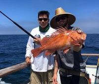 Coral Sea 8.14.16 1/2 day trip-6