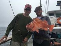 Coral Sea 8.16.16 3/4 day trip-10