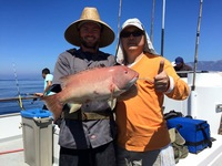 Coral Sea 8.18.16 1/2 day-2