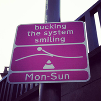 The Dangers of Bucking the System