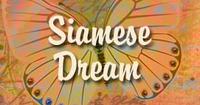 Siamese Dream Yoga Products