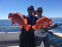 Coral Sea 9.25.16 3/4 day-4