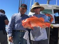 Coral Sea 9.26.16 3/4 day-1