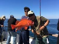 Coral Sea 9.27.16 3/4 day-1