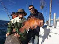 Coral Sea 10.3.16 3/4 day-4