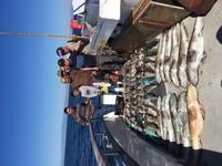 Coral Sea 10.8.16 3/4 day SRI-5