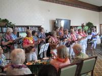 Party Hawaiian Style