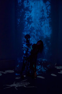 """""""Tulle Falls"""" by Jonathan Smith and Kym Cochran"""