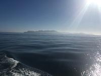Coral sea 10.25.16 3/4 day