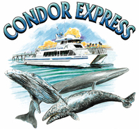 Condor Express Whale Watching Tours