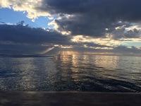 Coral Sea 11.20.16 3/4 day