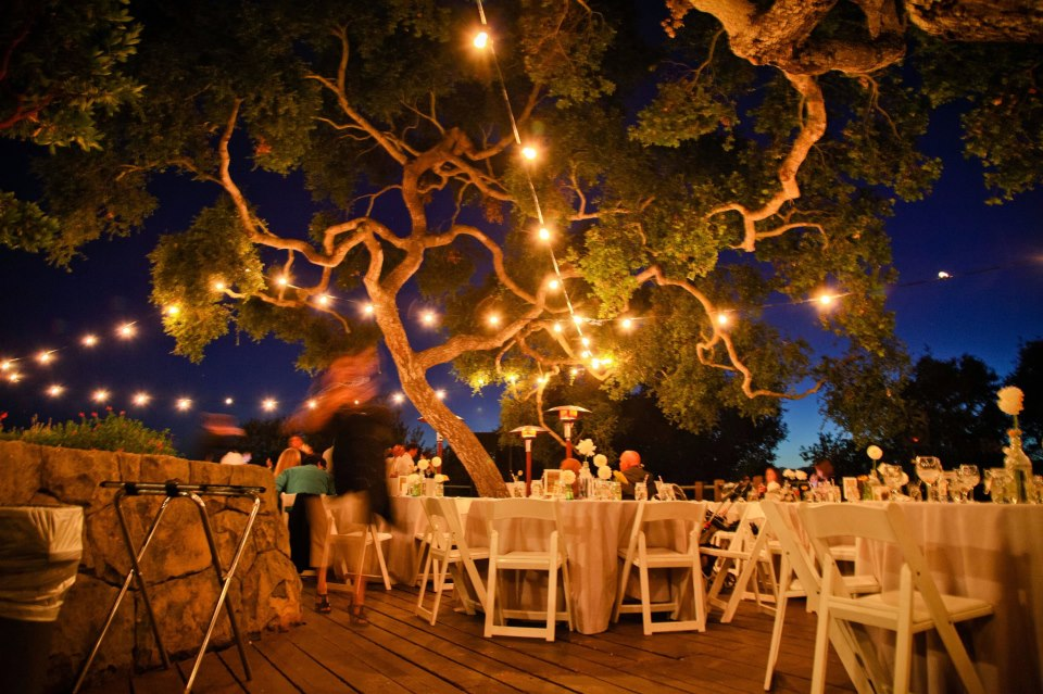 Santa Barbara string lights Elings Park Godric Grove