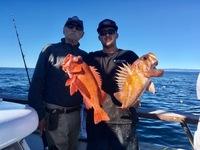 Coral Sea 12.20.16 3/4 day