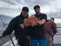 12.26.16 Coral Sea 3/4 day