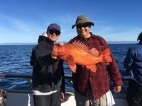 Coral Sea 12.27.16 3/4 day
