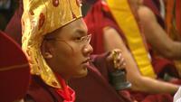 Dalai Lama & The Karmapa Lama