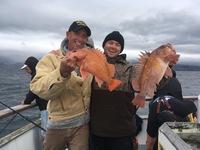 Coral Sea 12.31.16 3/4 Day